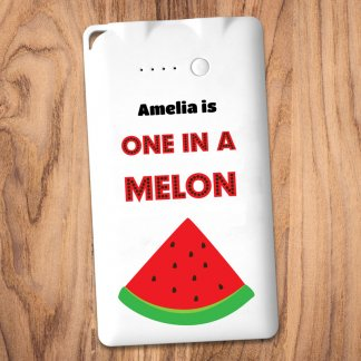 one in a melon powerbank