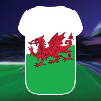 Wales Shirt Powerbank