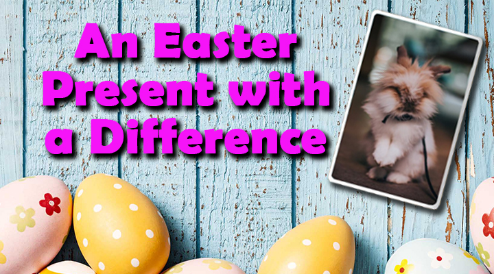 Looking for an An Easter Present with a Difference?